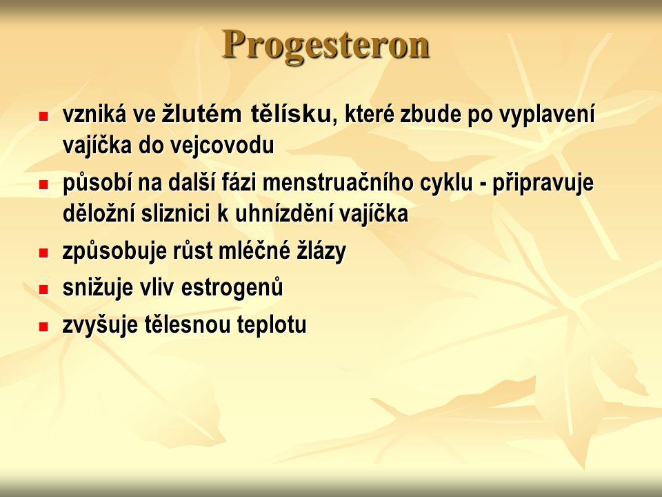 Progesteron vzniká ve žlutém tělísku, které zbude po vyplavení vajíčka do vejcovodu.