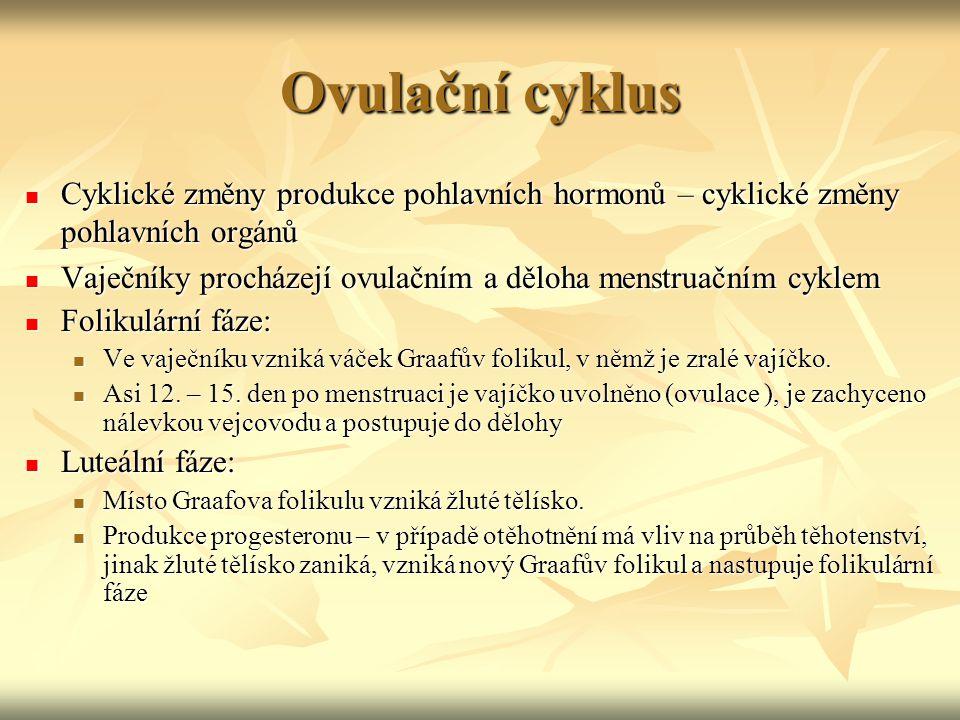 Ovulační cyklus Cyklické změny produkce pohlavních hormonů – cyklické změny pohlavních orgánů.