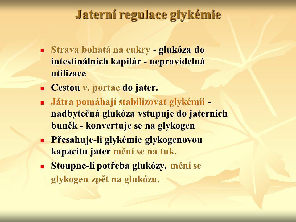 Jaterní regulace glykémie