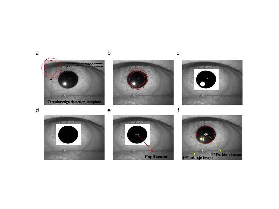 3D gaze tracking method using Purkinje images on eye optical model and pupil