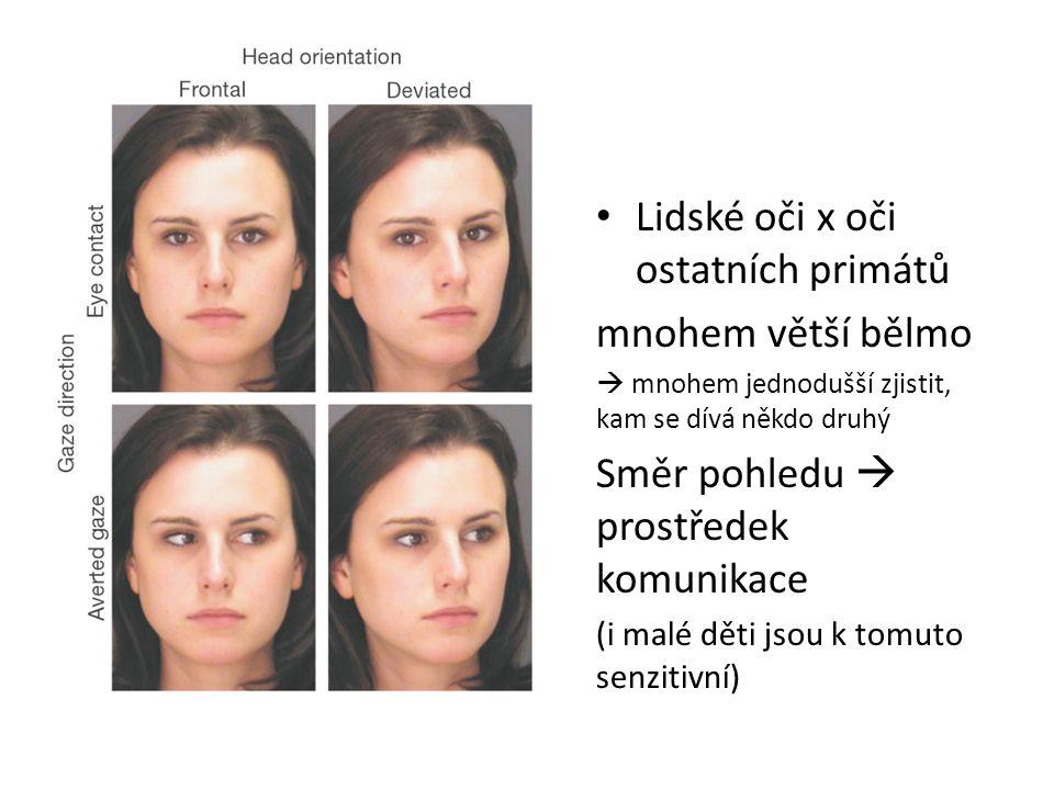 Lidské oči x oči ostatních primátů mnohem větší bělmo