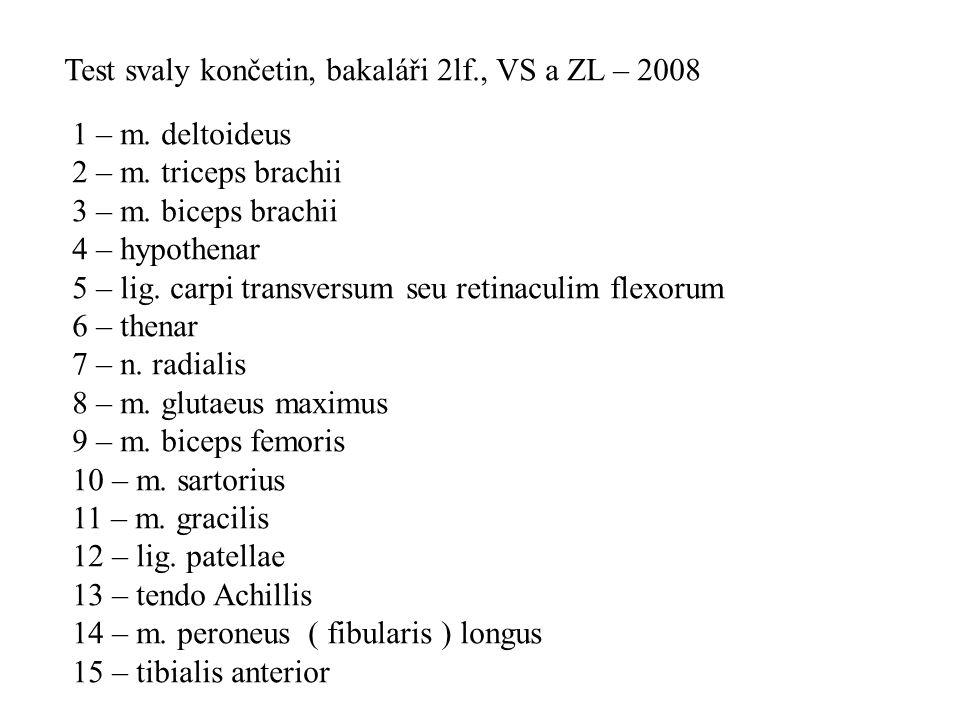 Test svaly končetin, bakaláři 2lf., VS a ZL – 2008