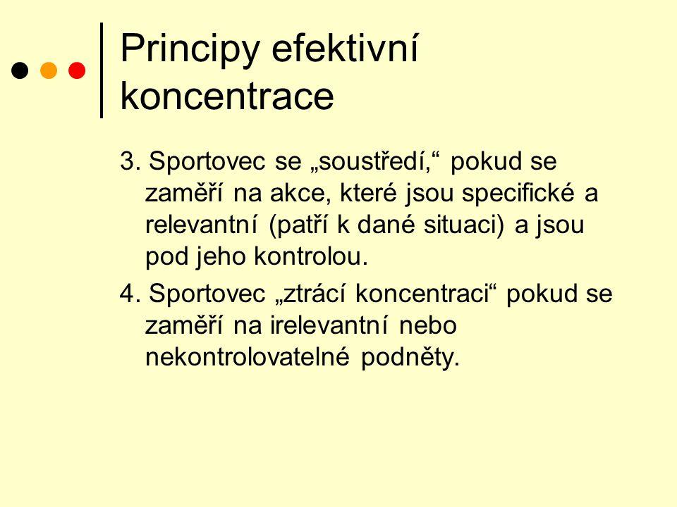 Principy efektivní koncentrace