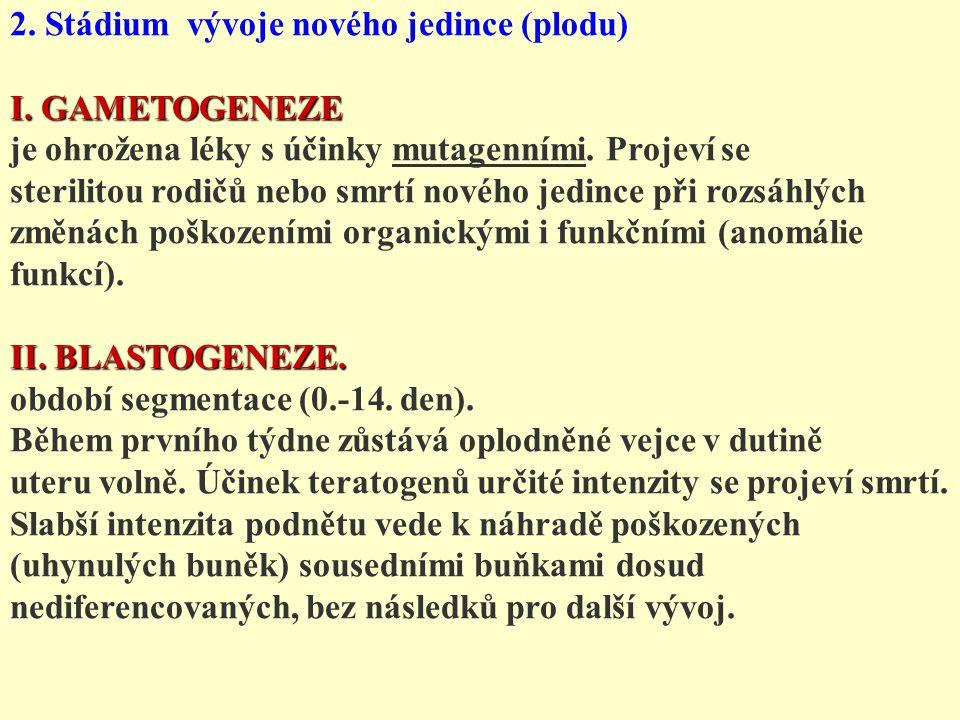 2. Stádium vývoje nového jedince (plodu)