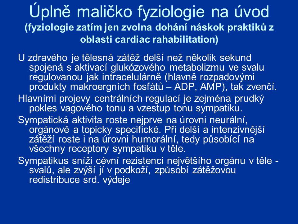 Úplně maličko fyziologie na úvod (fyziologie zatím jen zvolna dohání náskok praktiků z oblasti cardiac rahabilitation)