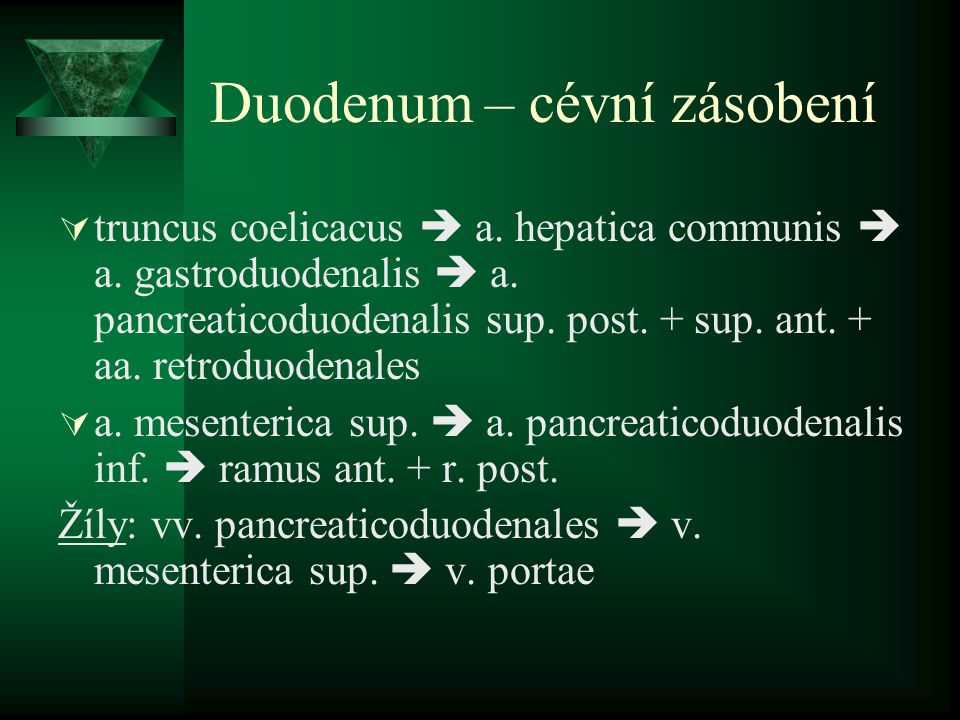 Duodenum – cévní zásobení