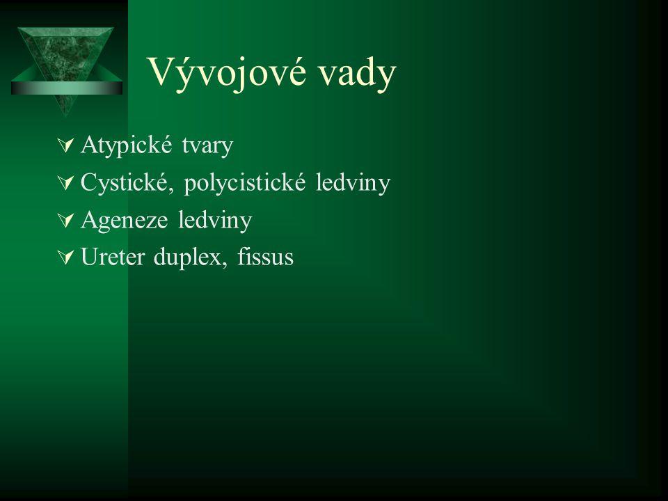 Vývojové vady Atypické tvary Cystické, polycistické ledviny