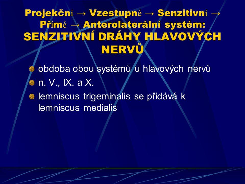 Projekční → Vzestupné → Senzitivní → Přímé → Anterolaterální systém: SENZITIVNÍ DRÁHY HLAVOVÝCH NERVŮ