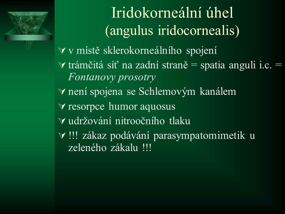 Iridokorneální úhel (angulus iridocornealis)