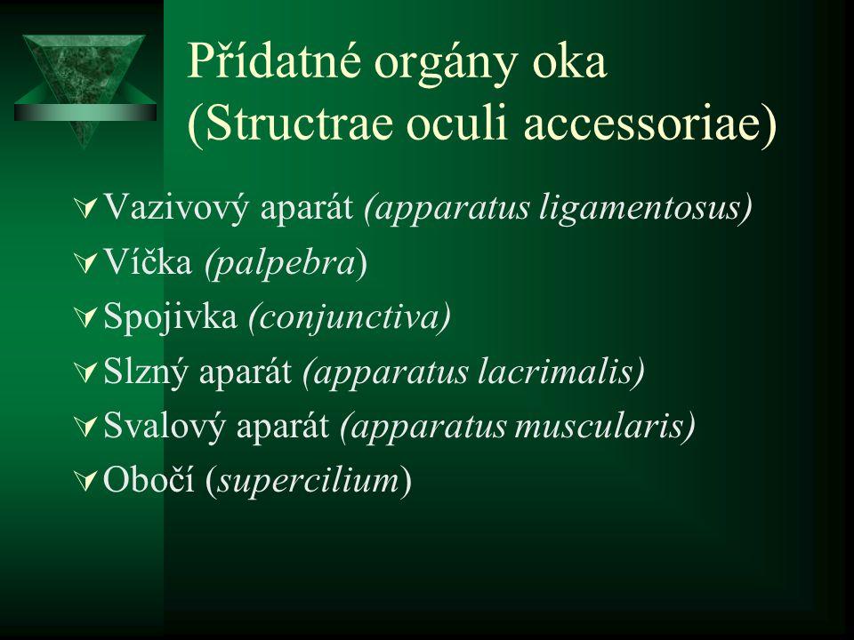 Přídatné orgány oka (Structrae oculi accessoriae)
