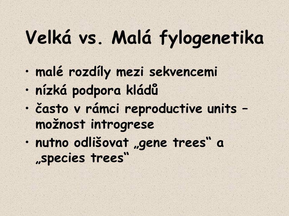Velká vs. Malá fylogenetika