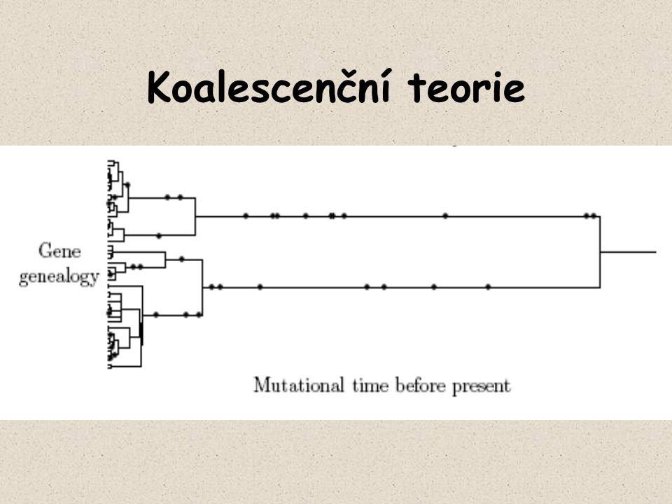 Koalescenční teorie