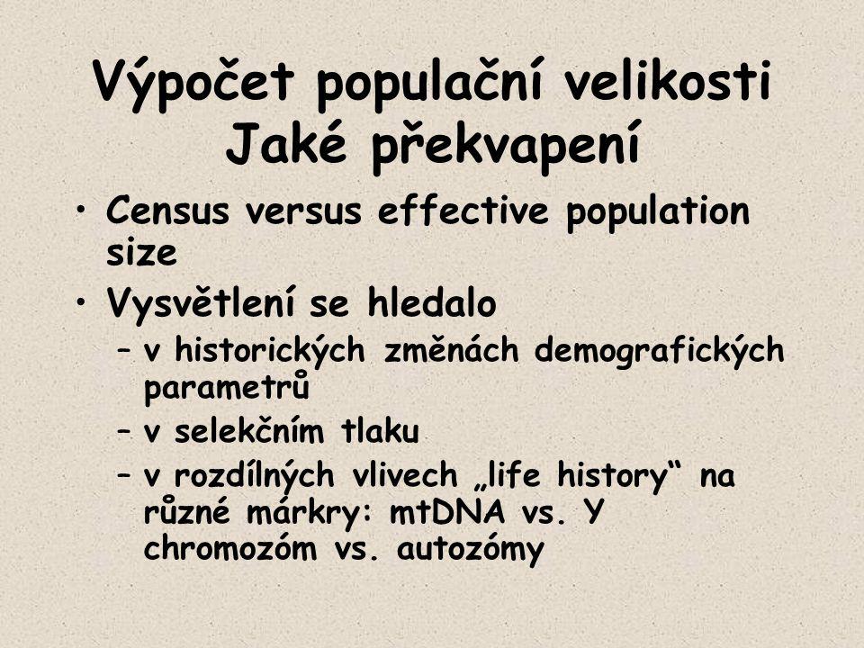 Výpočet populační velikosti Jaké překvapení