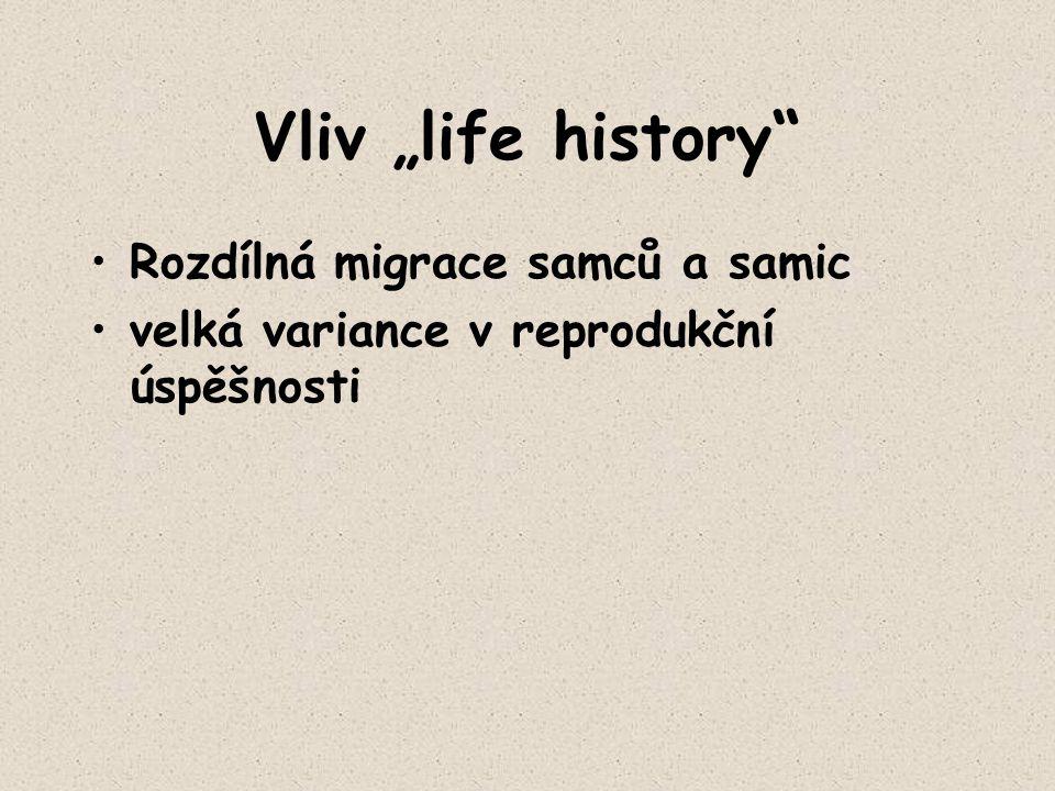 """Vliv """"life history Rozdílná migrace samců a samic"""