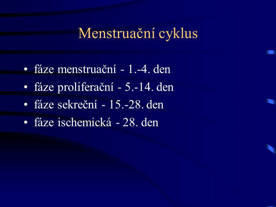 Menstruační cyklus fáze menstruační - 1.-4. den