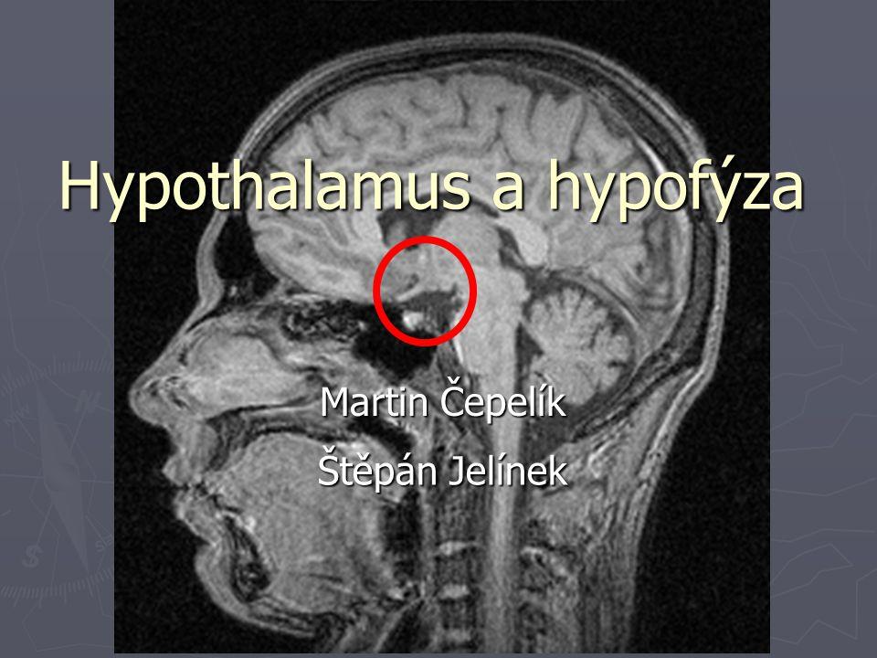 Hypothalamus a hypofýza