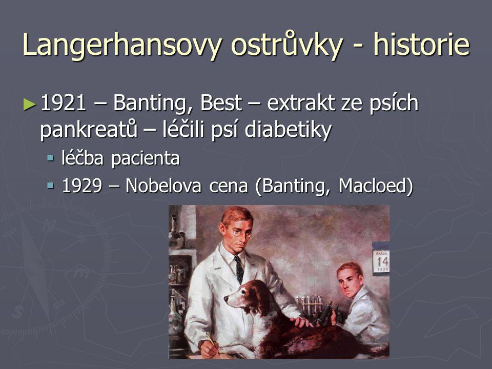 Langerhansovy ostrůvky - historie