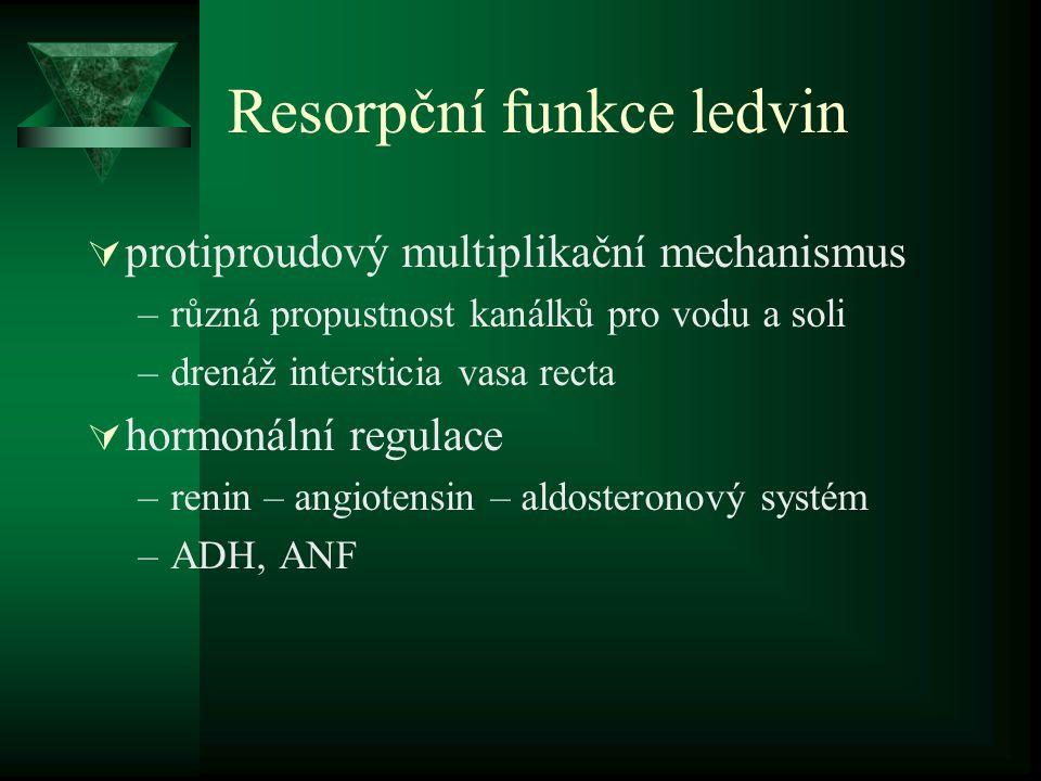 Resorpční funkce ledvin