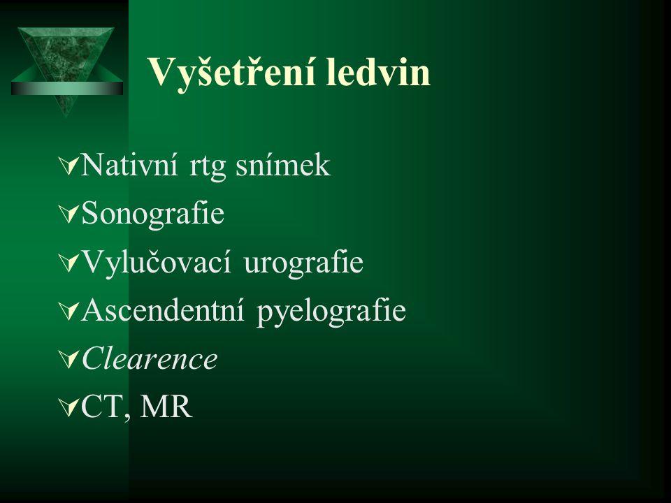 Vyšetření ledvin Nativní rtg snímek Sonografie Vylučovací urografie