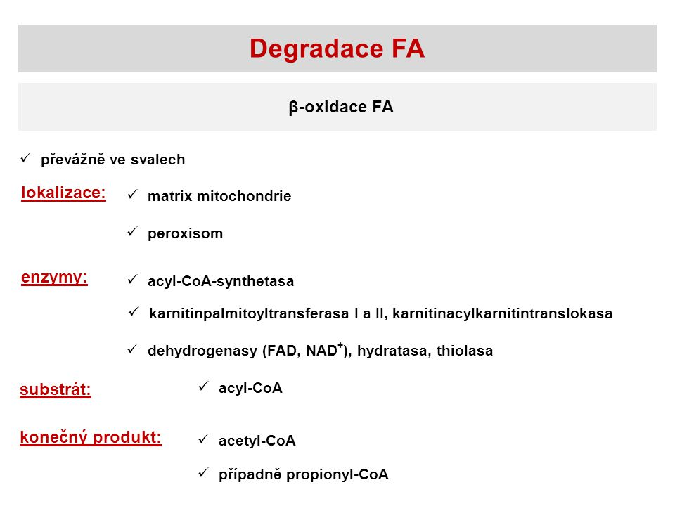 Degradace FA β-oxidace FA lokalizace: enzymy: substrát: