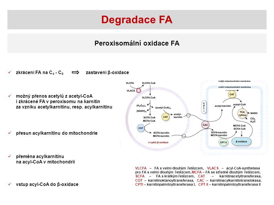 Degradace FA Peroxisomální oxidace FA zkrácení FA na C4 - C6