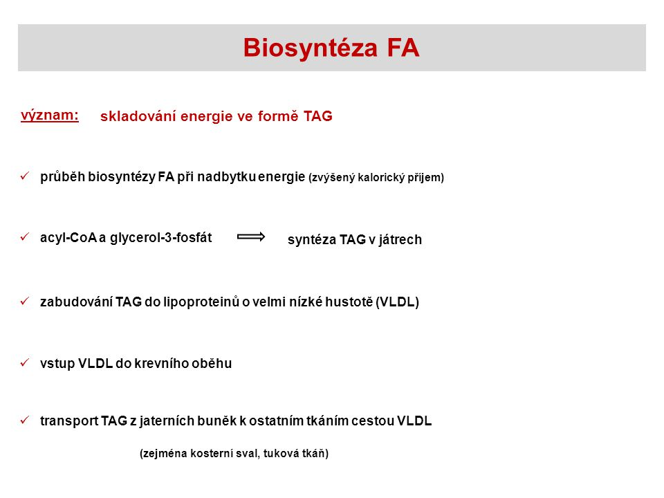 Biosyntéza FA význam: skladování energie ve formě TAG
