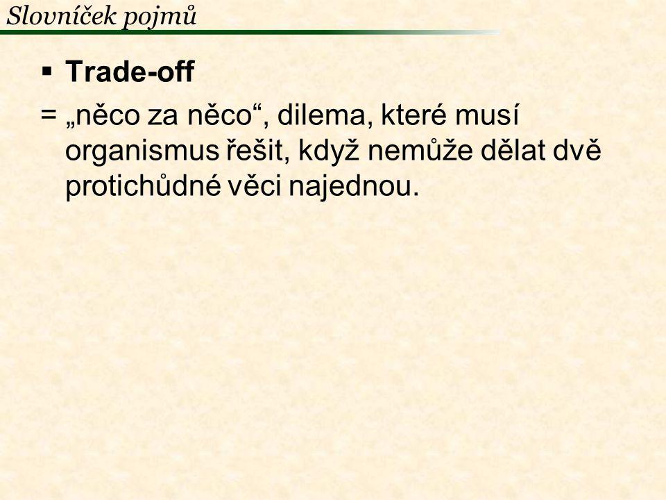 Slovníček pojmů Trade-off.