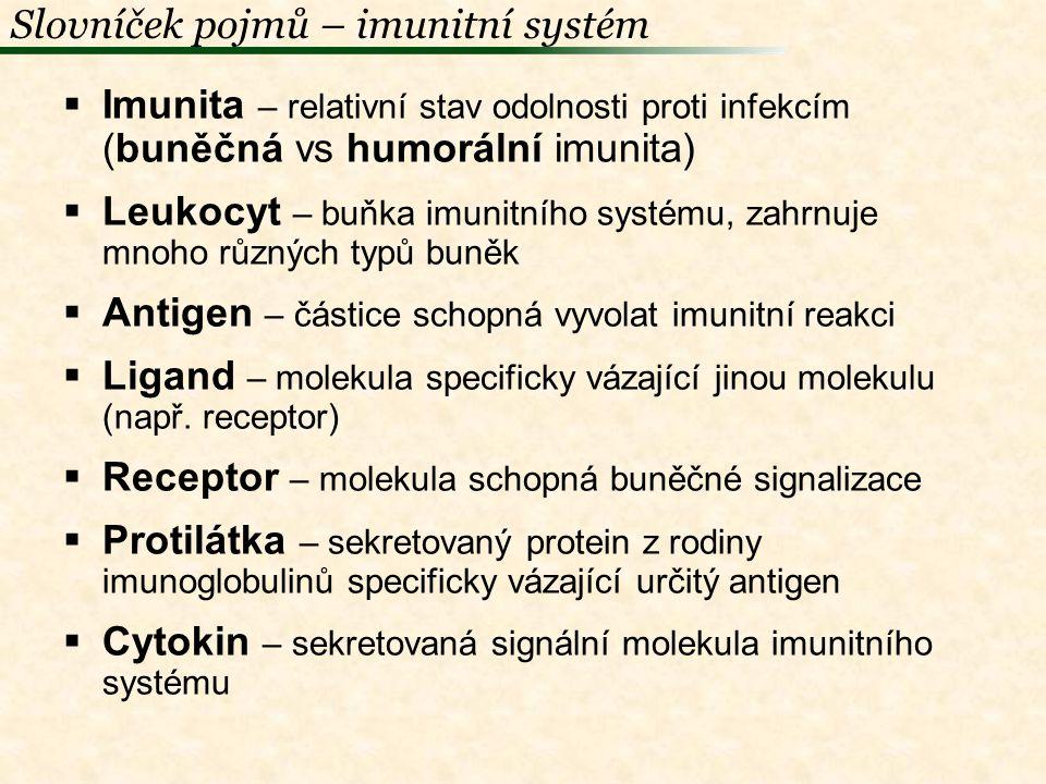 Slovníček pojmů – imunitní systém