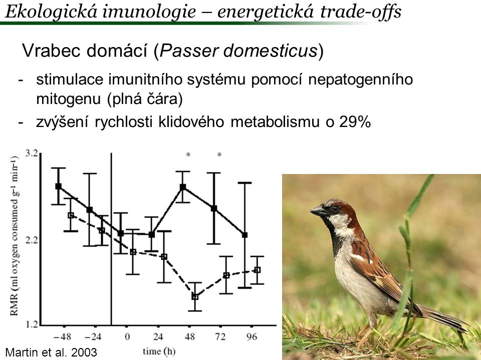 Ekologická imunologie – energetická trade-offs