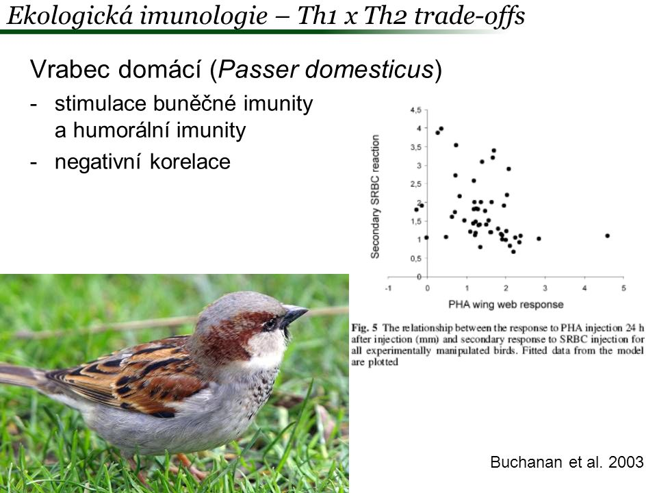 Ekologická imunologie – Th1 x Th2 trade-offs