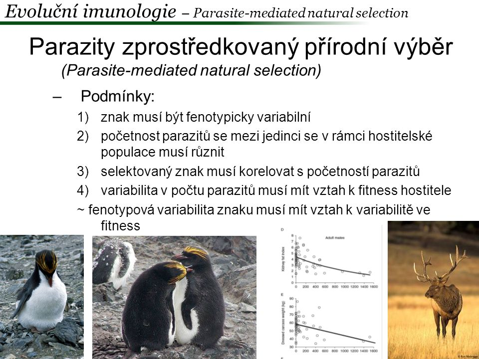 Evoluční imunologie – Parasite-mediated natural selection