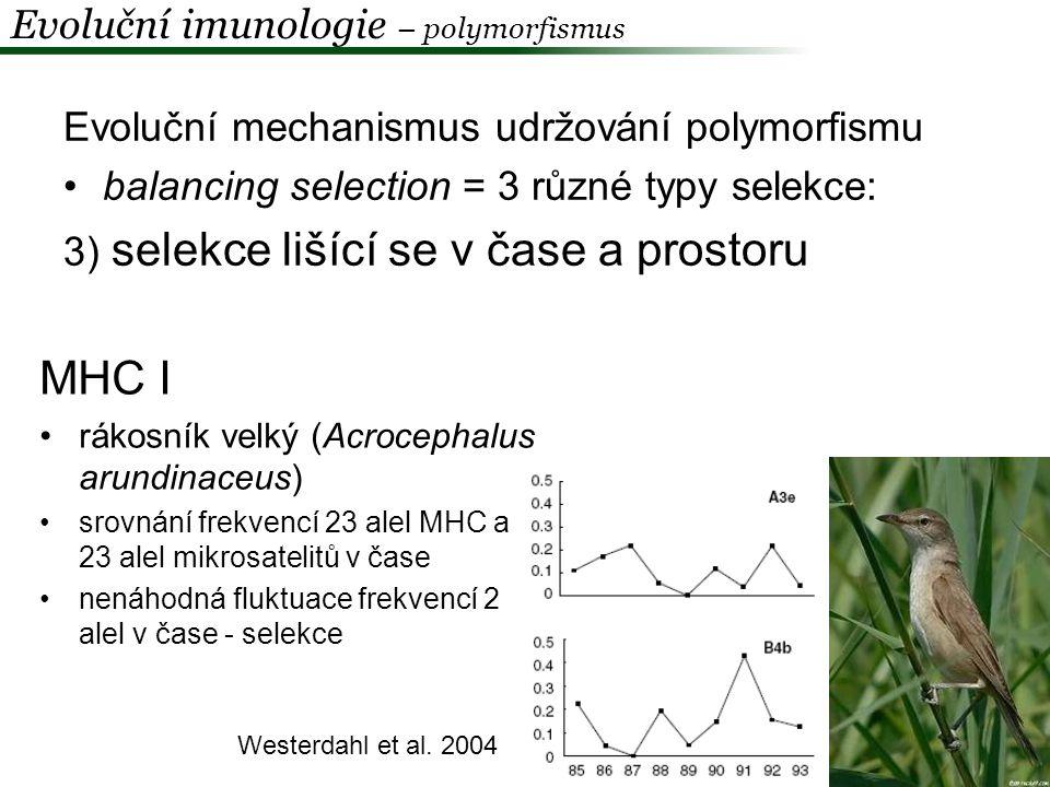 MHC I Evoluční imunologie – polymorfismus