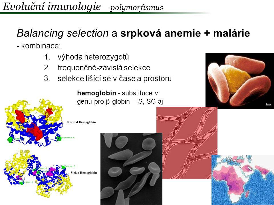 Evoluční imunologie – polymorfismus