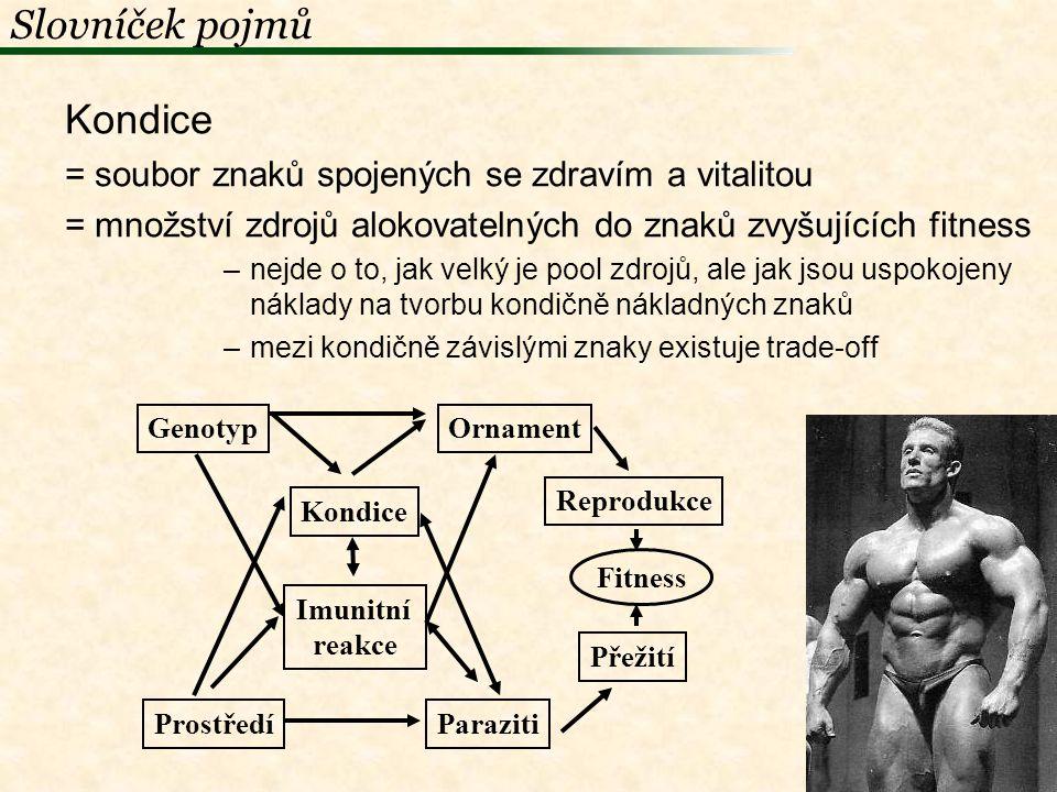Slovníček pojmů Kondice