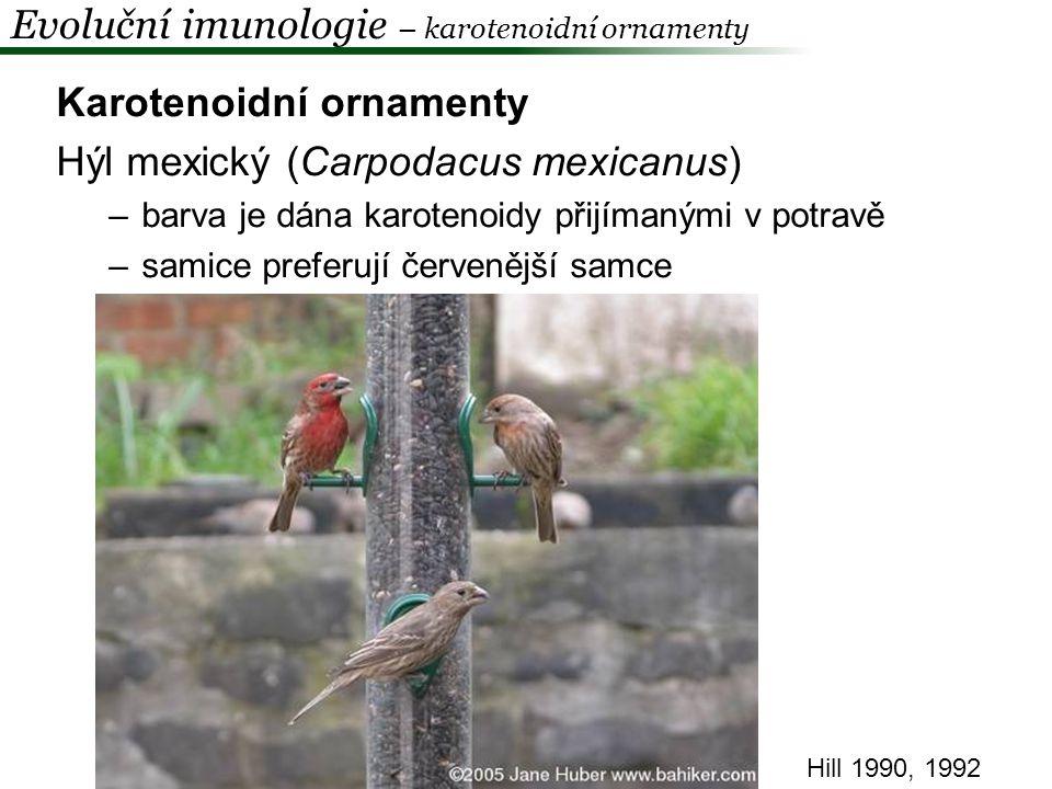 Evoluční imunologie – karotenoidní ornamenty