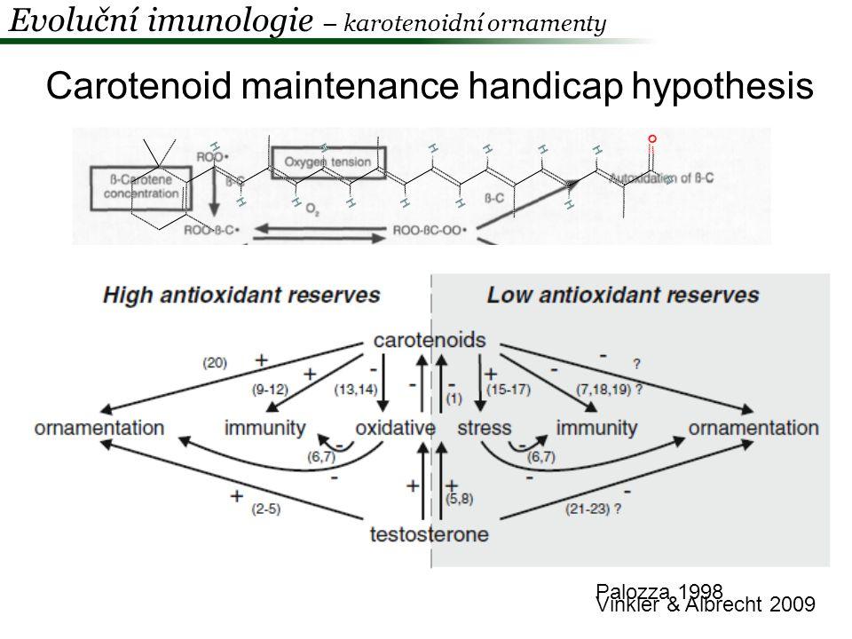 Carotenoid maintenance handicap hypothesis