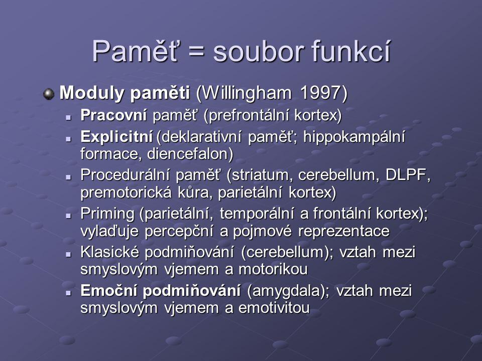 Paměť = soubor funkcí Moduly paměti (Willingham 1997)