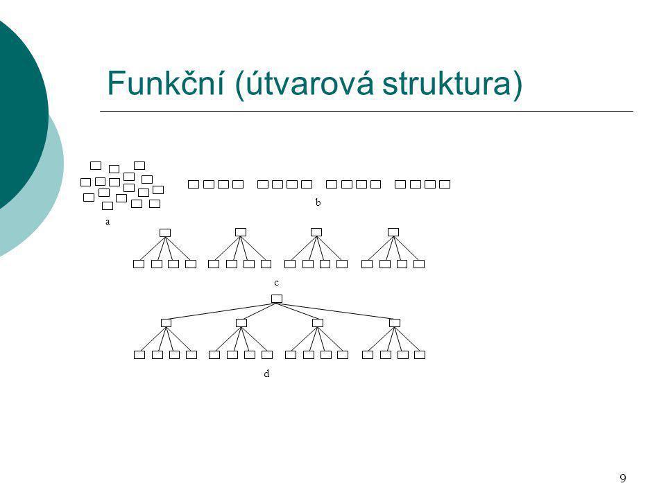 Funkční (útvarová struktura)