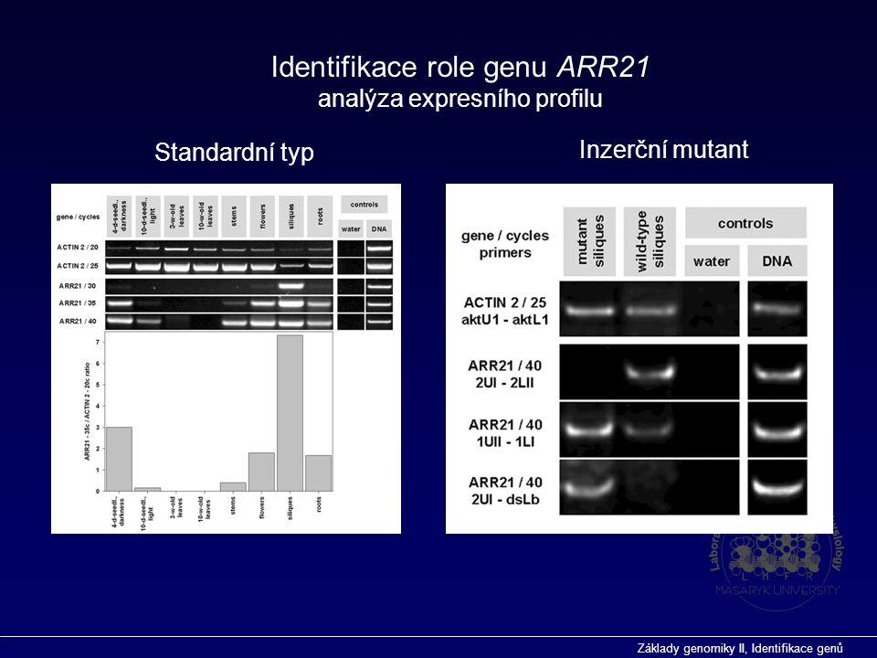 Identifikace role genu ARR21 analýza expresního profilu