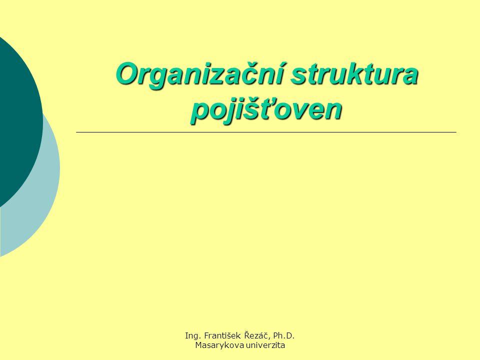 Organizační struktura pojišťoven