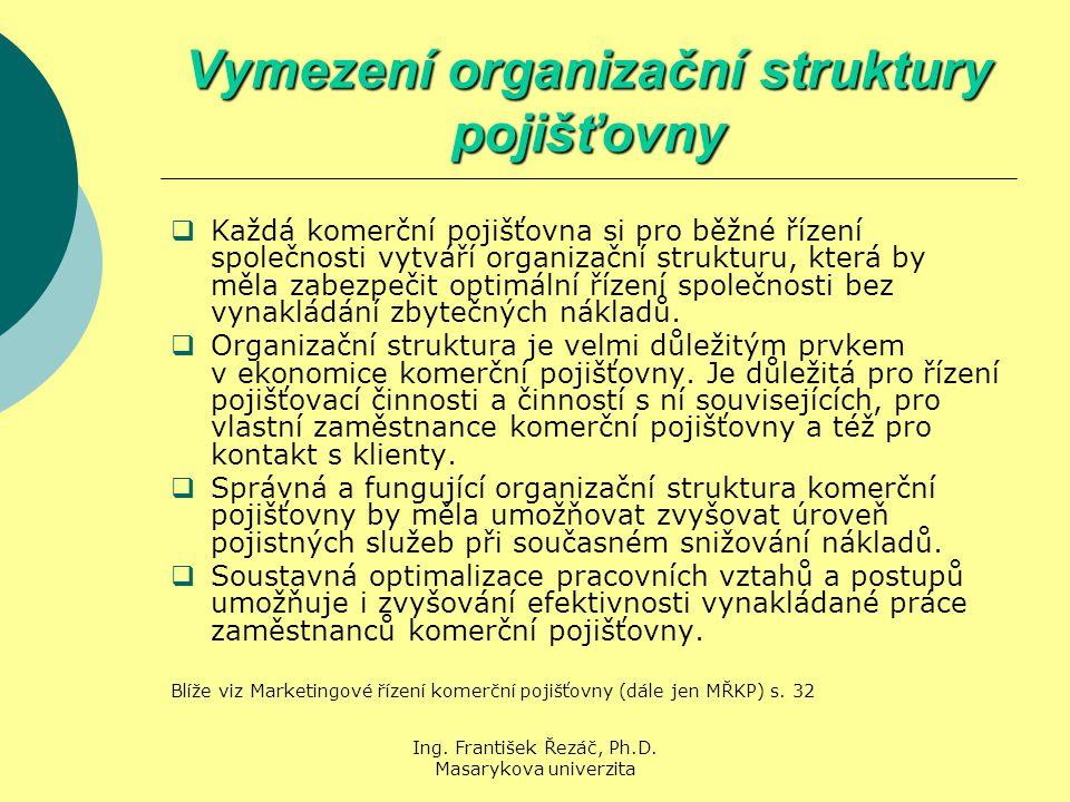 Vymezení organizační struktury pojišťovny
