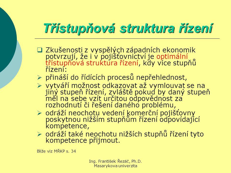 Třístupňová struktura řízení