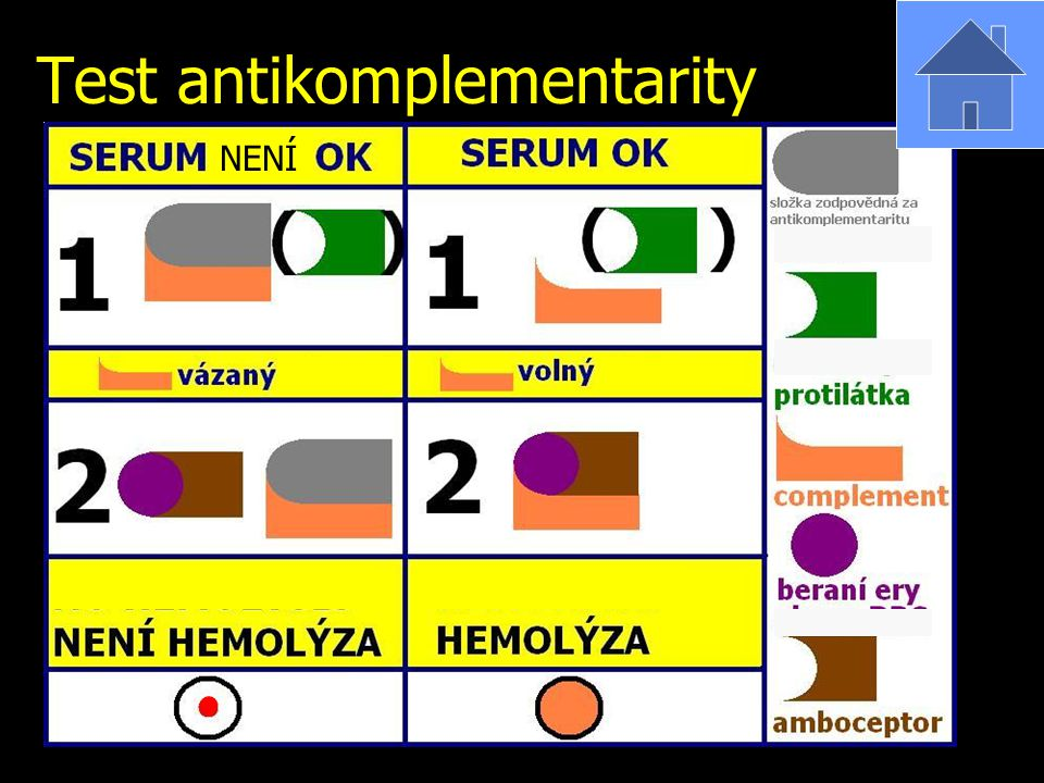 Test antikomplementarity