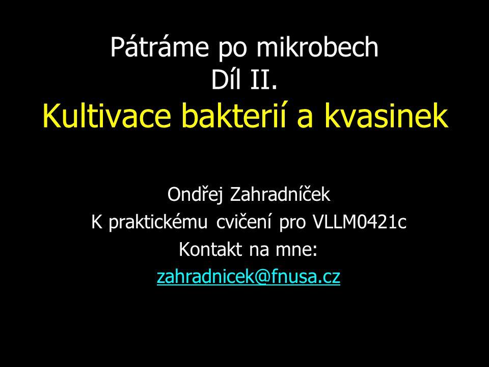 Pátráme po mikrobech Díl II. Kultivace bakterií a kvasinek