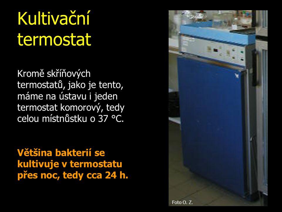 Kultivační termostat Kromě skříňových termostatů, jako je tento, máme na ústavu i jeden termostat komorový, tedy celou místnůstku o 37 °C.
