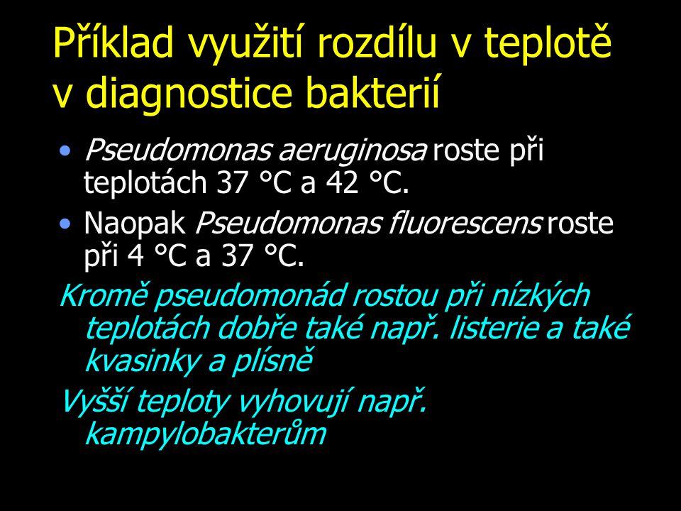 Příklad využití rozdílu v teplotě v diagnostice bakterií