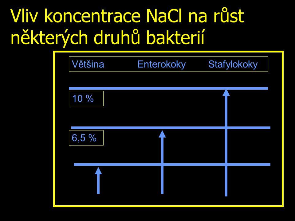 Vliv koncentrace NaCl na růst některých druhů bakterií