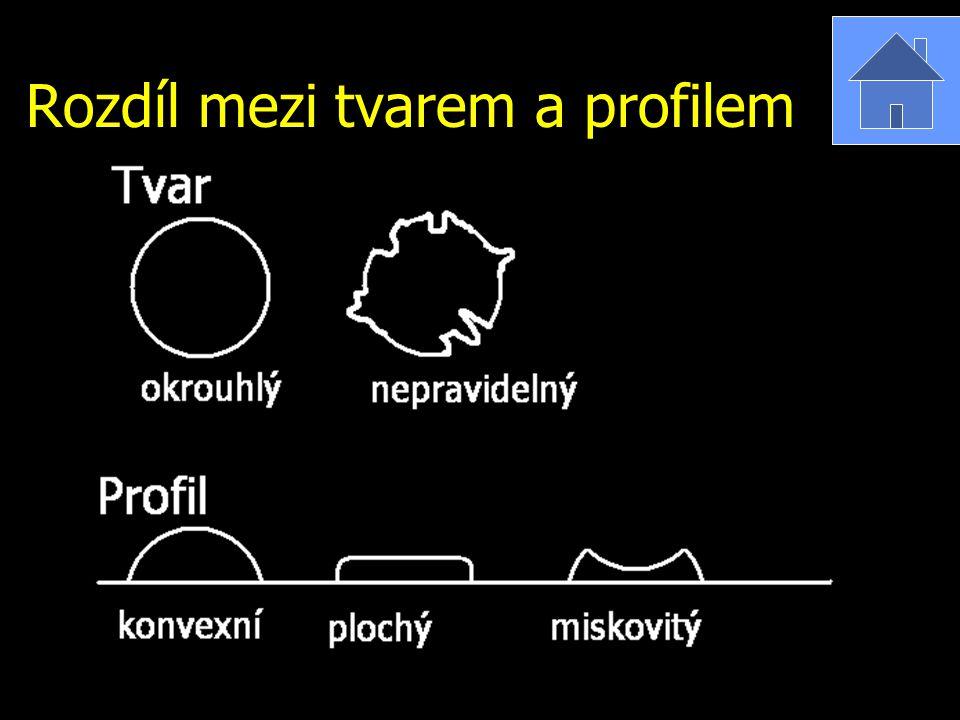 Rozdíl mezi tvarem a profilem