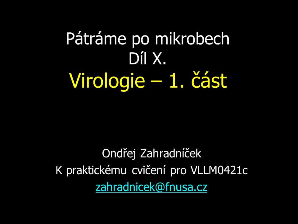 Pátráme po mikrobech Díl X. Virologie – 1. část