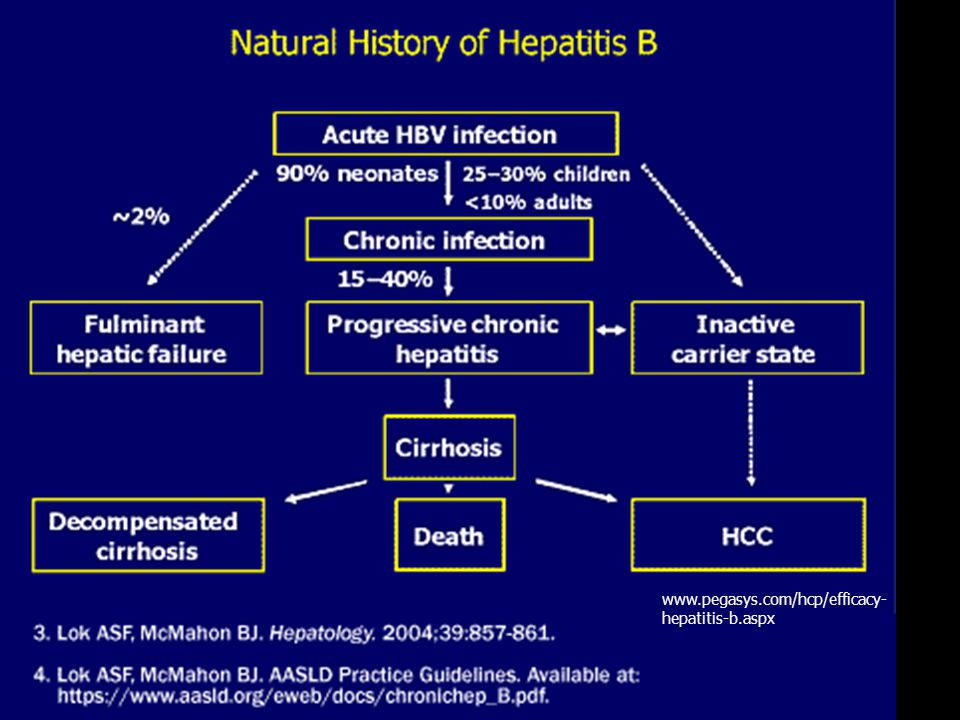 www.pegasys.com/hcp/efficacy-hepatitis-b.aspx
